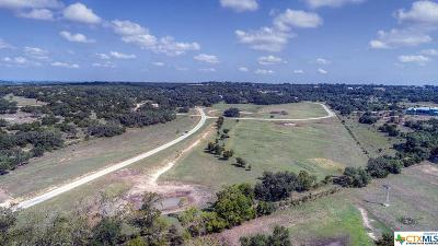 New Braunfels Residential Lots & Land For Sale: 309 Doehne Oaks