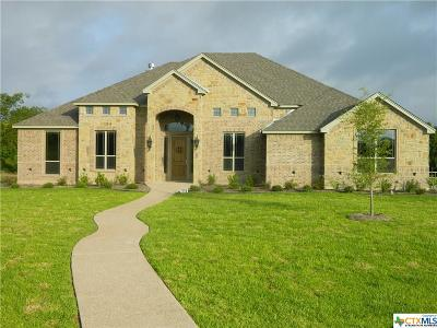 Belton Single Family Home For Sale: 463 Creekside