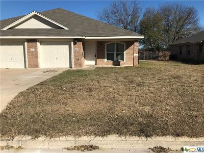 Harker Heights Multi Family Home For Sale: 221b Dale Earnhardt