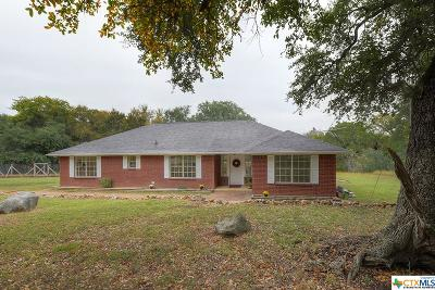 New Braunfels Single Family Home For Sale: 22145 Old Nacogdoches