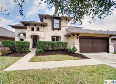 Round Rock Single Family Home For Sale: 4327 Angelico