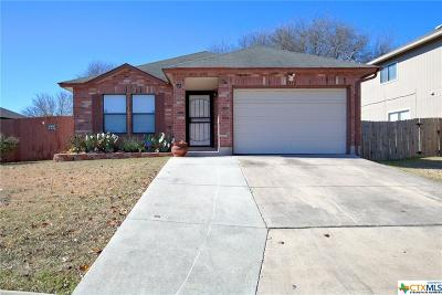 San Antonio Single Family Home For Sale: 9712 Lauren Mist