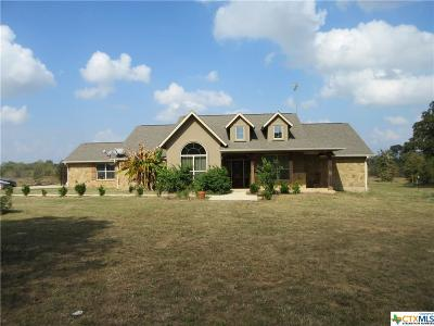 Guadalupe County Single Family Home For Sale: 604, 610 Darst Field