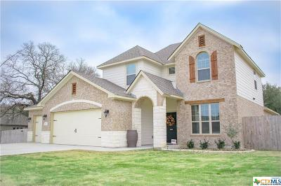 Belton Single Family Home For Sale: 250 Archstone