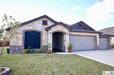 Killeen Single Family Home For Sale: 6511 Brushy Creek
