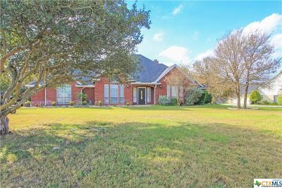 Salado TX Single Family Home For Sale: $325,000