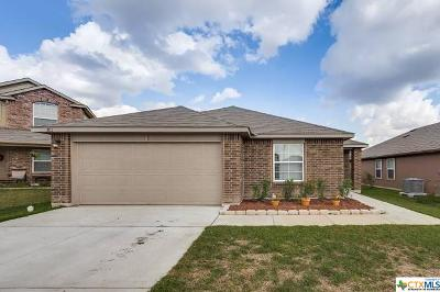 Seguin Single Family Home For Sale: 1012 Bromley Court