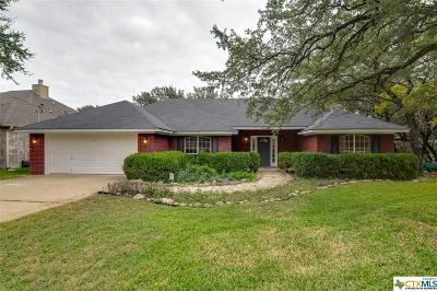 Belton Single Family Home For Sale: 301 Arrowhead Point