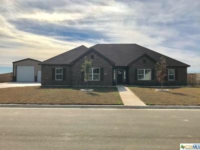 Salado Single Family Home For Sale: 4105 Big Brooke Dr.