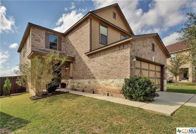 Kyle Single Family Home For Sale: 220 Tower