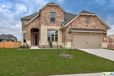 Schertz Single Family Home For Sale: 1035 Daylan Heights
