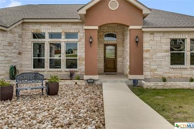 Buda TX Single Family Home For Sale: $373,000