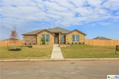 Bell County, Coryell County, Lampasas County Single Family Home For Sale: 3110 Saint Luke