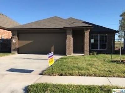 Killeen Single Family Home For Sale: 3404 Lorne Drive