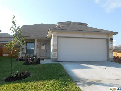 Killeen Single Family Home For Sale: 3305 Lorne Drive