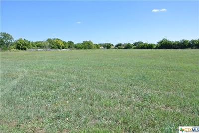 Killeen Commercial For Sale: 1700 S Hwy 195 Highway