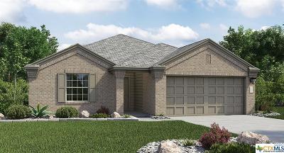 Killeen Single Family Home For Sale: 3806 Endicott Drive