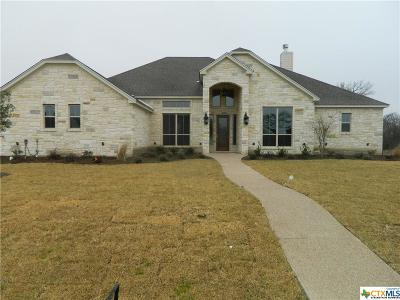 Belton Single Family Home For Sale: 487 Creekside