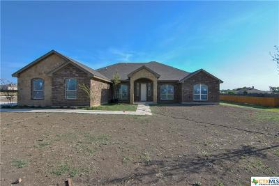 Salado Single Family Home For Sale: 4114 Big Brooke