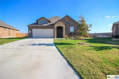 Temple TX Single Family Home For Sale: $247,500