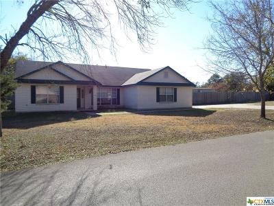 Belton Single Family Home For Sale: 46 Branding Iron Drive