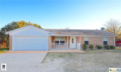 Kempner Single Family Home For Sale: 3368 Fm 2808