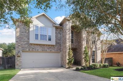 San Antonio Single Family Home For Sale: 23514 Enchanted Fall