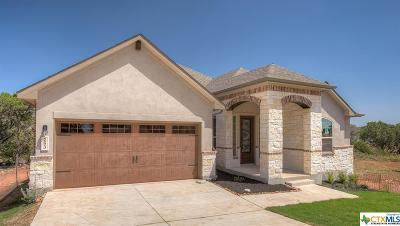 New Braunfels Single Family Home For Sale: 253 Sigel Avenue
