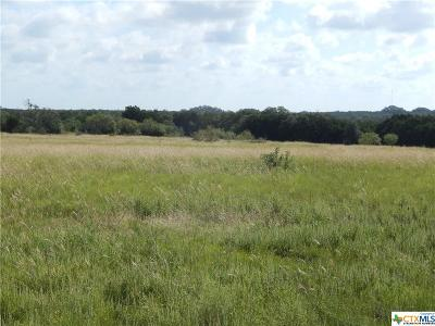 Bell County, Burnet County, Coryell County, Lampasas County, Llano County, Mills County, San Saba County, Williamson County, Hamilton County Residential Lots & Land For Sale: Tract 39a Judge's Rd
