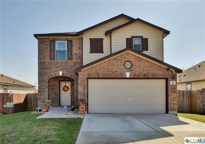 Hays County Single Family Home For Sale: 195 Karrie