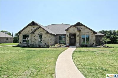 Belton Single Family Home For Sale: 446 Creekside Drive