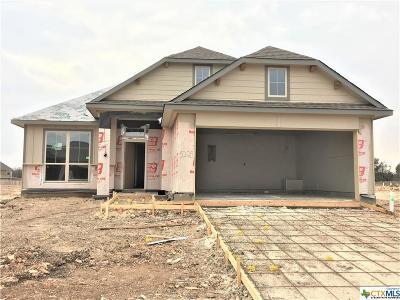 Belton TX Single Family Home For Sale: $197,200