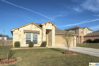 Hays County Single Family Home For Sale: 193 Cazador