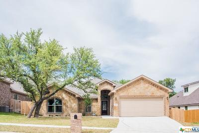Belton Single Family Home For Sale: 1728 Yturria Drive