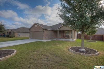 New Braunfels TX Single Family Home For Sale: $215,000