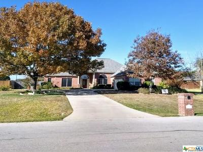 Belton Single Family Home For Sale: 304 Cypress Springs