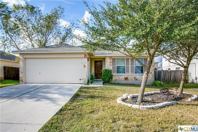 Hays County Single Family Home For Sale: 137 Atlantis
