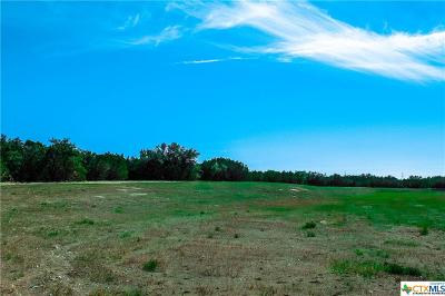 Bell County, Burnet County, Coryell County, Lampasas County, Llano County, Mills County, San Saba County, Williamson County, Hamilton County Residential Lots & Land For Sale: Tract 49a Judge's Rd