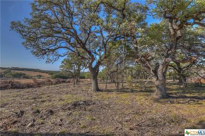 Bell County, Burnet County, Coryell County, Lampasas County, Llano County, McLennan County, Mills County, San Saba County, Williamson County Residential Lots & Land For Sale: Tract 82 Carpenter Court