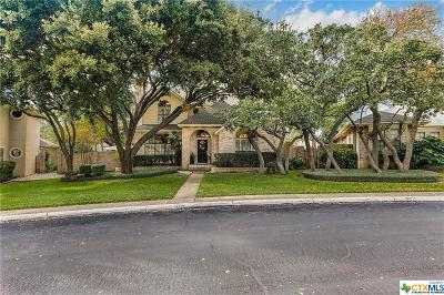 San Antonio Single Family Home For Sale: 1723 Eagle Point