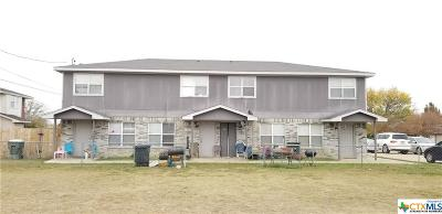 Killeen Multi Family Home For Sale: 4305 Shawn Drive