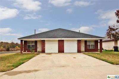Killeen Multi Family Home For Sale: 1901 Schwald Road #A-B