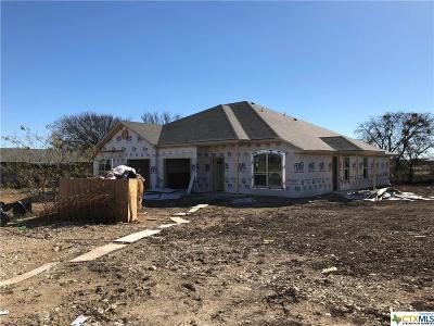 Killeen Multi Family Home For Sale: 201 Sladecek Drive #A & B