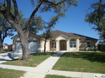 Killeen Single Family Home For Sale: 7700 Pyrite Drive