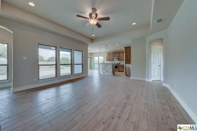 Fischer TX Single Family Home For Sale: $269,000