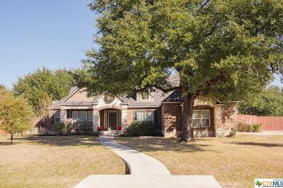 Belton Single Family Home For Sale: 147 Capstone Street