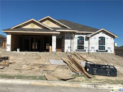 Temple TX Single Family Home For Sale: $170,900