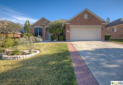 Cibolo Single Family Home For Sale: 212 Summit View