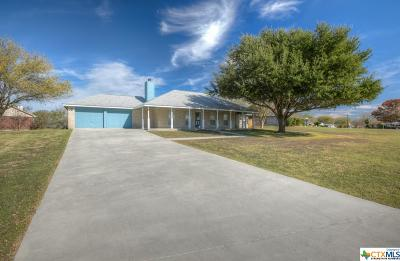 New Braunfels Single Family Home For Sale: 134 Sky Country