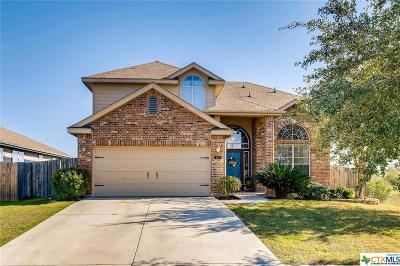 New Braunfels Single Family Home For Sale: 539 Gaines